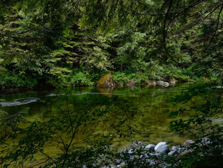 Wildly Luxurious CLAYOQUOT WILDERNESS RETREAT