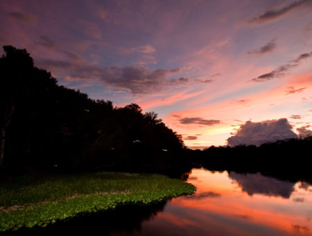 Peru <br/>The Amazon
