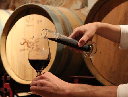 Wine in the Algarve Winemaker Experience