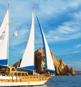 Letter from The Baja California Penninsula – Los Cabos, Mexico