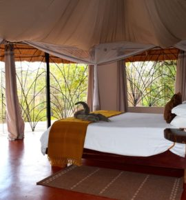 Tongole Wilderness Lodge, Malawi
