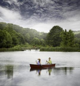 Wild and Wonderful- Barnsley Resort