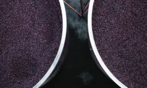 Swanky Sips: The Pinot Coast – Victoria, Australia