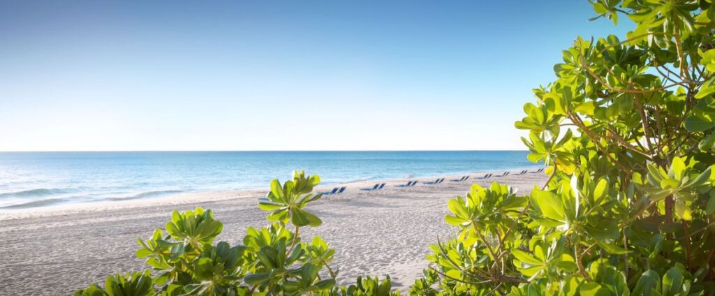 beach at Pelican Beach Resort