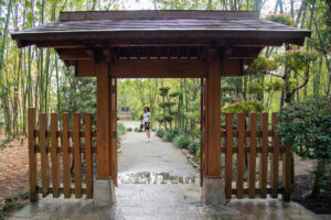 PB 5 Japanese garden